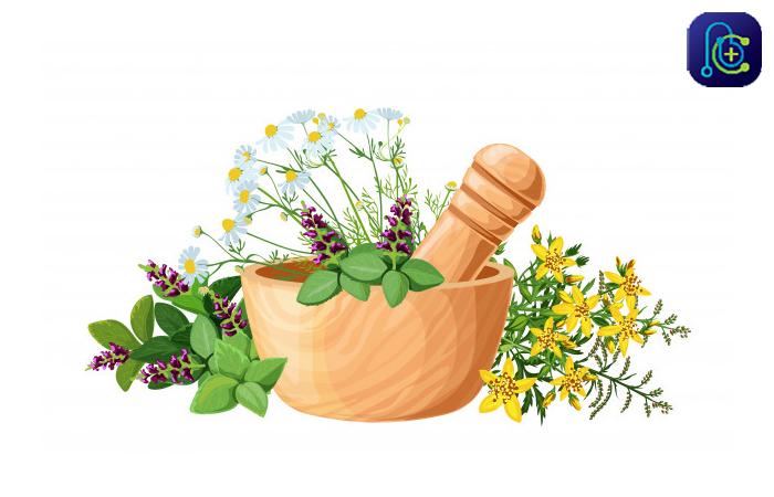 درمان شقاق مقعدی با داروهای گیاهی