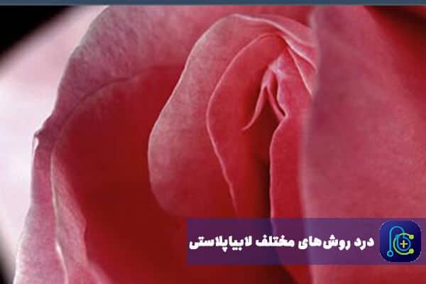علت دردهای مختلف بعد از عمل لابیا